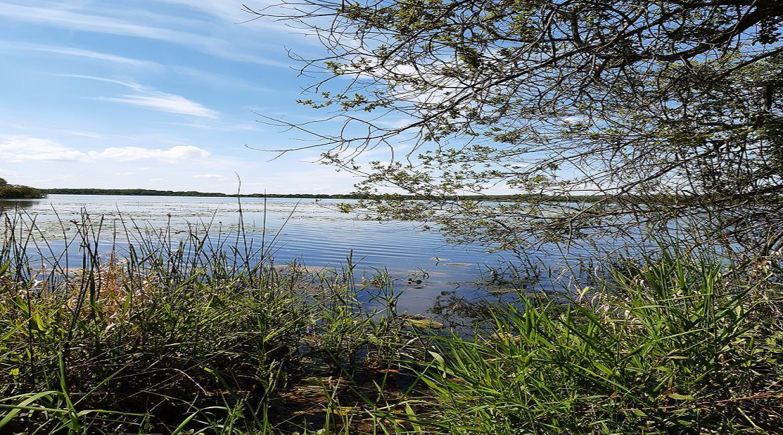 balisage étang des Landes